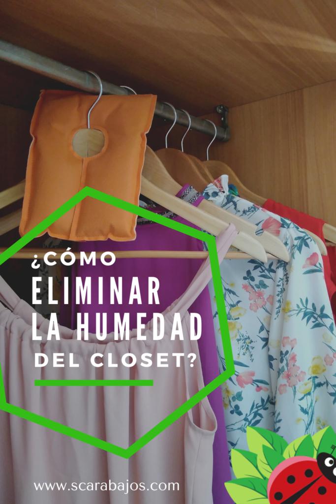 ¿Cómo eliminar la humedad en el closet? - Scarabajos